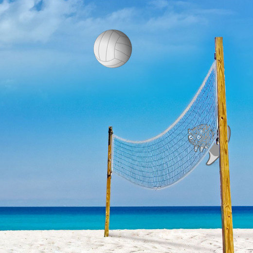 Play Game - Volley Ball